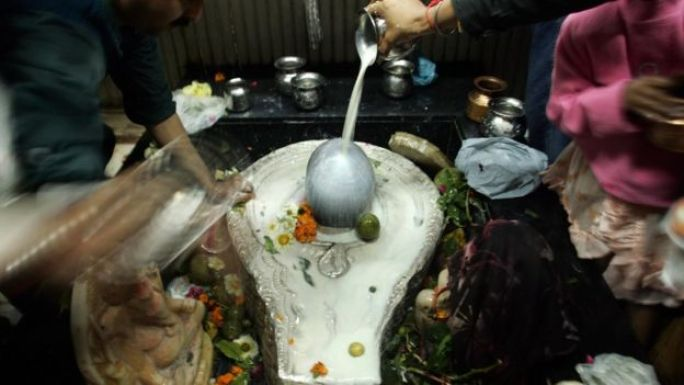 Devotees pour milk on to a shiva lingam