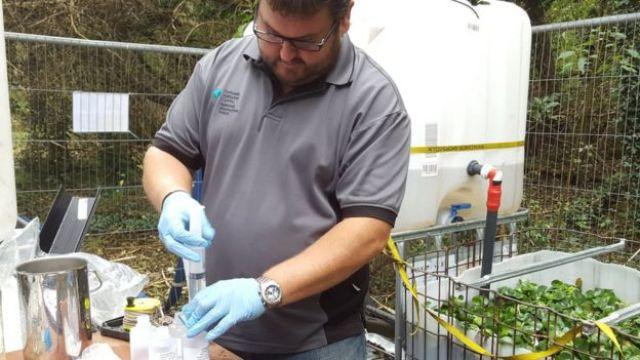 Cientista faz experimento com aguapé