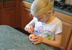 From House to Home {Link Party}: The Little House's Clove Apple