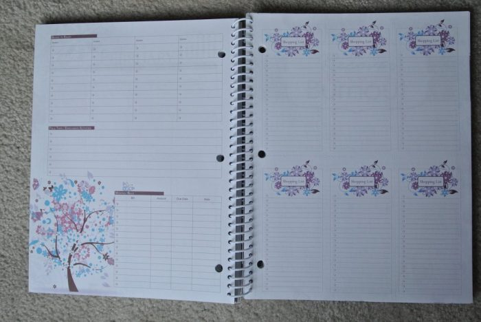 Fourth of July Well-Planned Day Planner 077