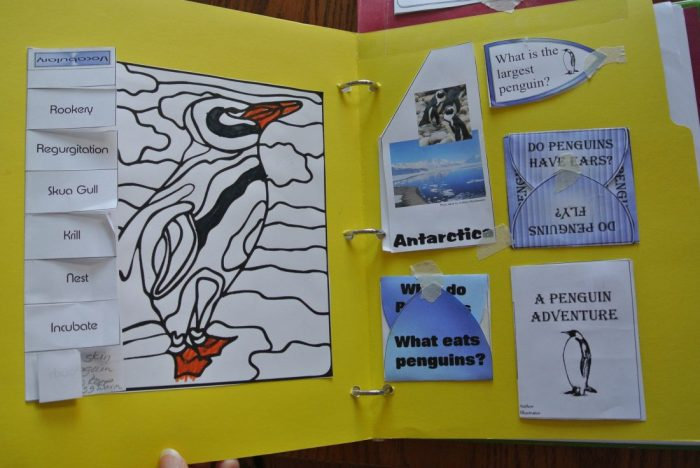Penguin lapbook 014