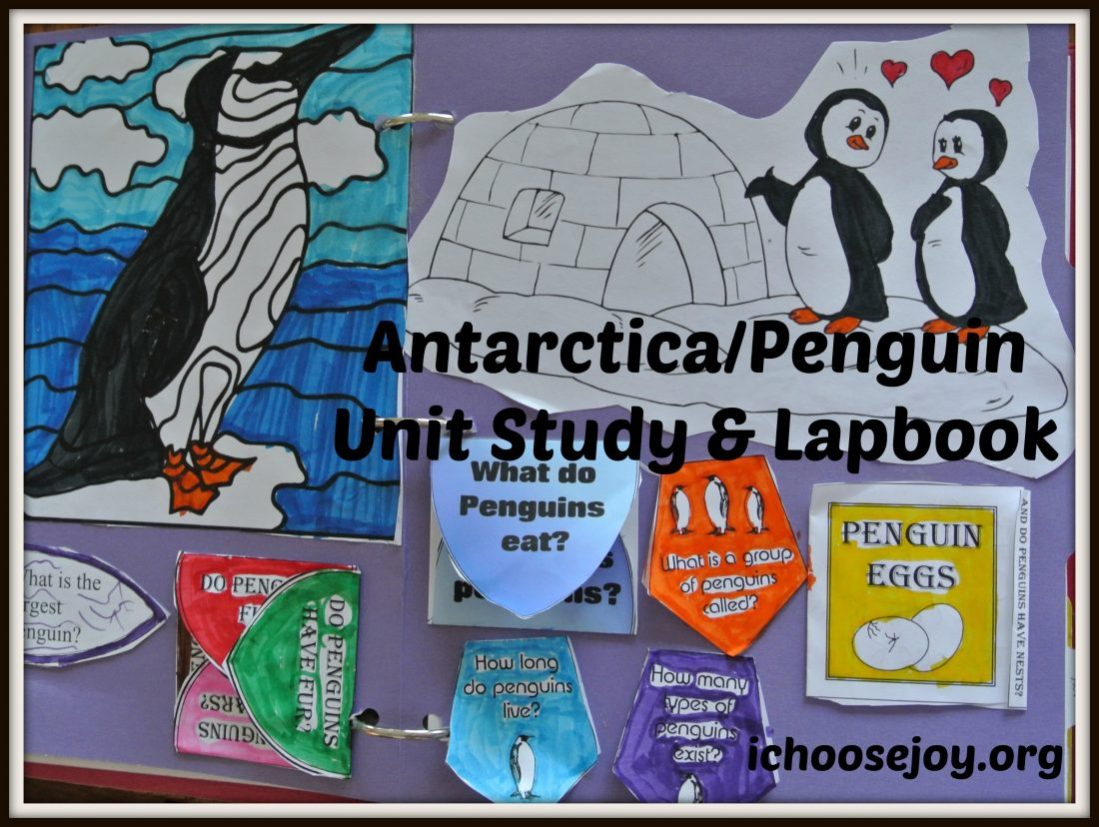 Homeschool Essentials: Antarctica Unit Study/ Penguin Lapbook Resources