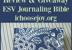 Review/ Giveaway: ESV Journaling Bible