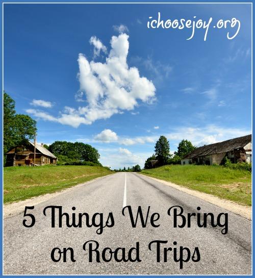 5 Things We Bring on Road Trips