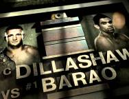 'UFC Road to the Octagon: Dillashaw vs. Barao 2′ full episode