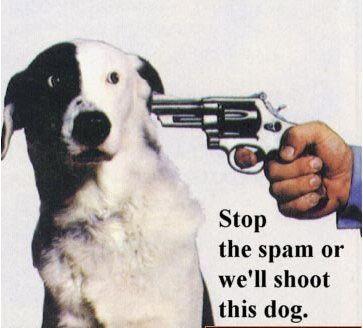 stop-spam.jpg