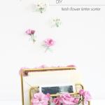 Back with a Tiny Bang – DIY Fresh Flower Letter Sorter