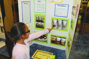 Courtesy Photo/RUSD Fourth-grader Kaitlyn Sagastume shows the results drinking coffee has on teeth. the 9-year-old was one of dozens who participated in the RUSD 2014 Science Fair.