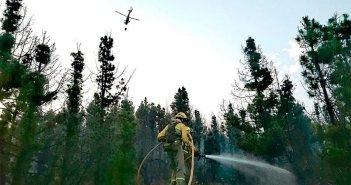 Островной Совет Тенерифе увеличивает меры безопасности против возросшего риска лесных пожаров