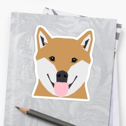 Small Crop Of Shiba Inu Cute