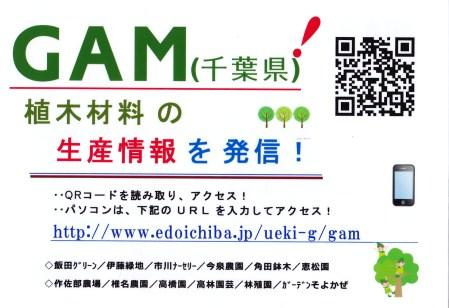 gam_1