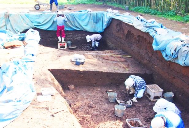 イエネコ(発掘作業が続けられているカラカミ遺跡)