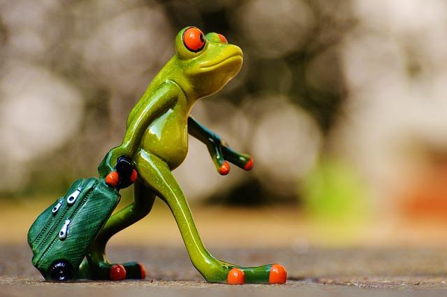 frog-1033313_640