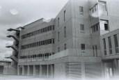 Junior building
