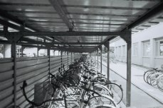Bicycle rack for students