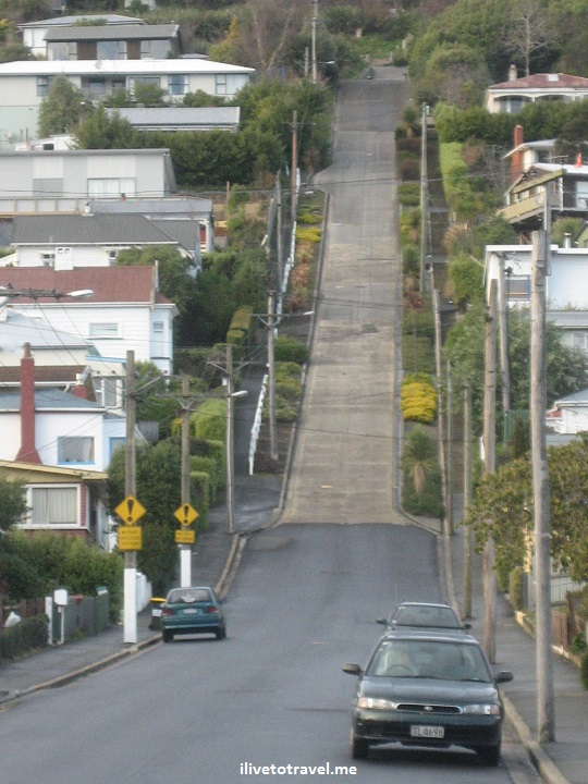 Steepest street, Guiness, world, Dunedin, New Zealand, Canon EOS Rebel, travel