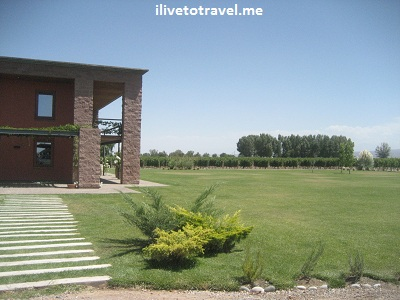 Land around a winery in Mendoza, Argentina