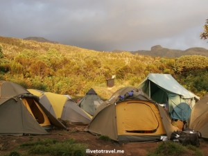 Tents at Machame Camp during sunset in Kilimanjaro