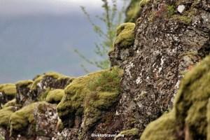 Þingvellir, Parliament, Iceland, Golden Circle, history, signficant, travel, photo, nature