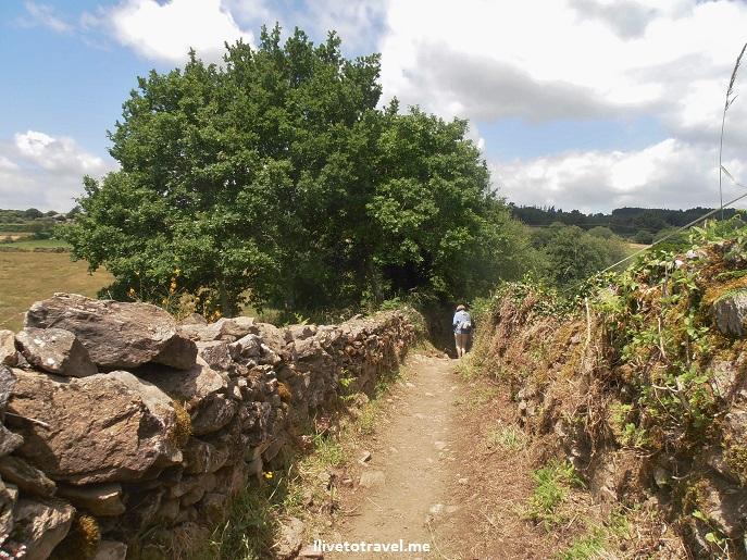Camino de Santiago, Spain, trekking, hiking, path, Palas del Rei, Olympus
