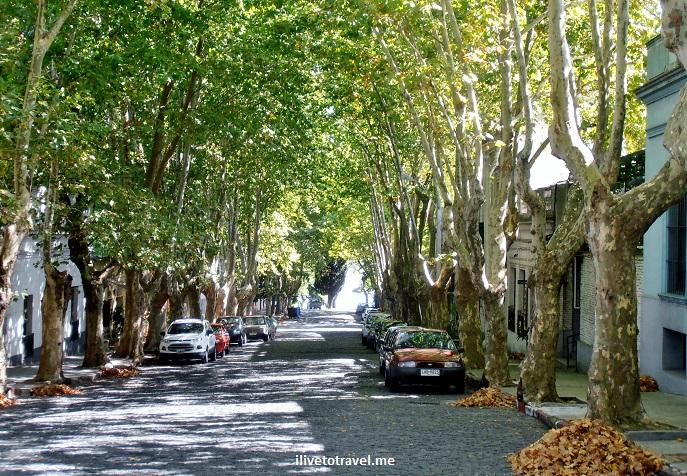 Colonia, Sacramento, Uruguay, colonial, UNESCO, World Heritage, Places to See, travel, photo, architecture, trees