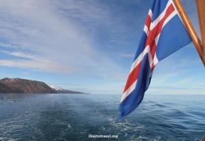 Iceland, sea, whale watching, Husavik, flag, Olympus, blue sky