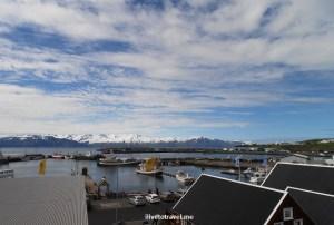 port, boats, Husavik, Iceland, travel, tourism, Olympus, photo