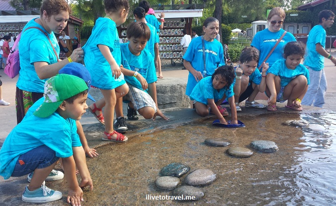 Buenos Aires, Argentina, zoo, Trekking for Kids, service, photo