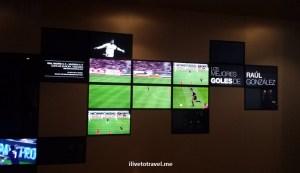 Bernabeu, Madrid, museum, museo, Real Madrid, tour, Spain, tourism, travel, photo, Raul, goals