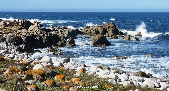 Pebble Beach, 17 Mile Drive, California, Pacific, Cypress Point, ocean, sea, algae, travel, drive, scenic
