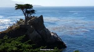 Pebble Beach, 17 Mile Drive, California, Pacific, Cypress Point, ocean, sea, algae, travel, drive, scenic, photo
