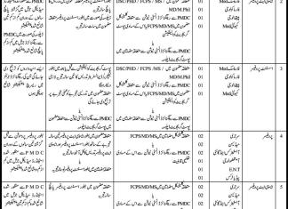 Benazir Bhutto Medical College Liyari Karachi Jobs