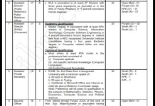 WAPDA Assistant Director Jobs 2016 NTS Application Form Last Date