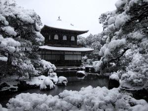 銀閣寺(ぎんかくじ)の画像