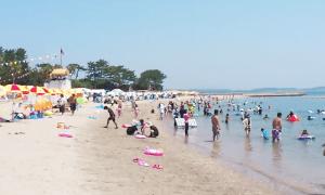 日間賀島東浜海水浴場の画像