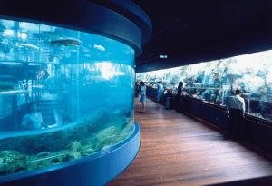 山梨県立富士湧水の里水族館の画像