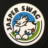 Jasper Swag Dog Walking Bag  – Review