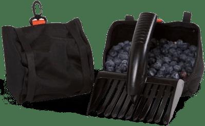 Förbered dig för bär- och svampsäsongen redan nu