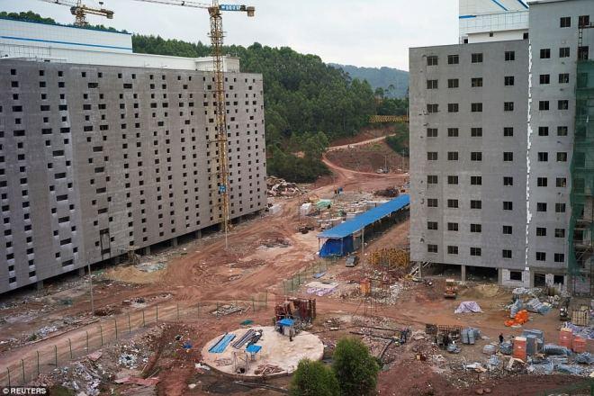"""""""Chung cư"""" cao tầng dành cho lợn ở Trung Quốc - 3"""