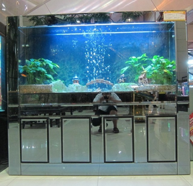 Aquarium/Rectangle Aquariums/Glass Aquarium/Acrylic Fish Tank Aquarium