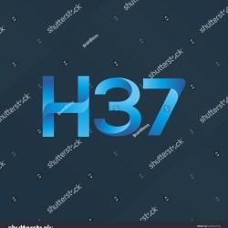 H 37 Letter Number Joint Logo Stock Vector 645363796 Shutterstock