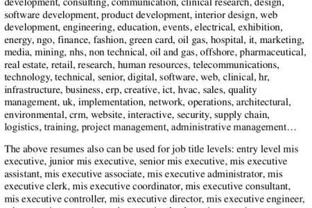 cv for mis executive