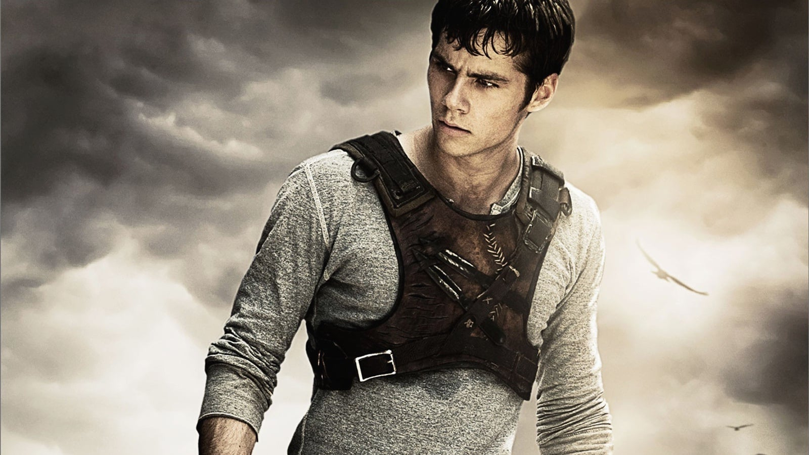 Watch Streaming The Maze Runner 2014 Online Movie