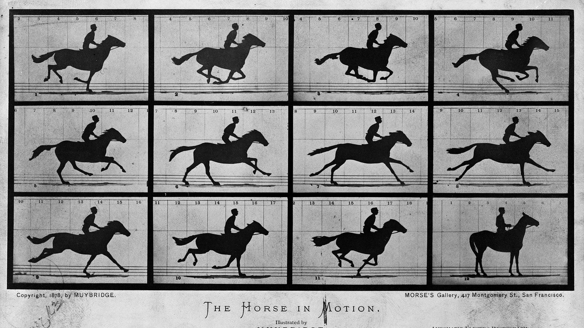 Watch Sallie Gardner at a Gallop 1878 Online Full Movies