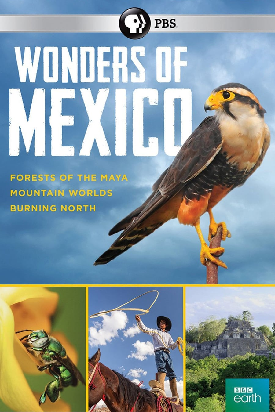 Mexico: Earth's Festival of Life series tv complet