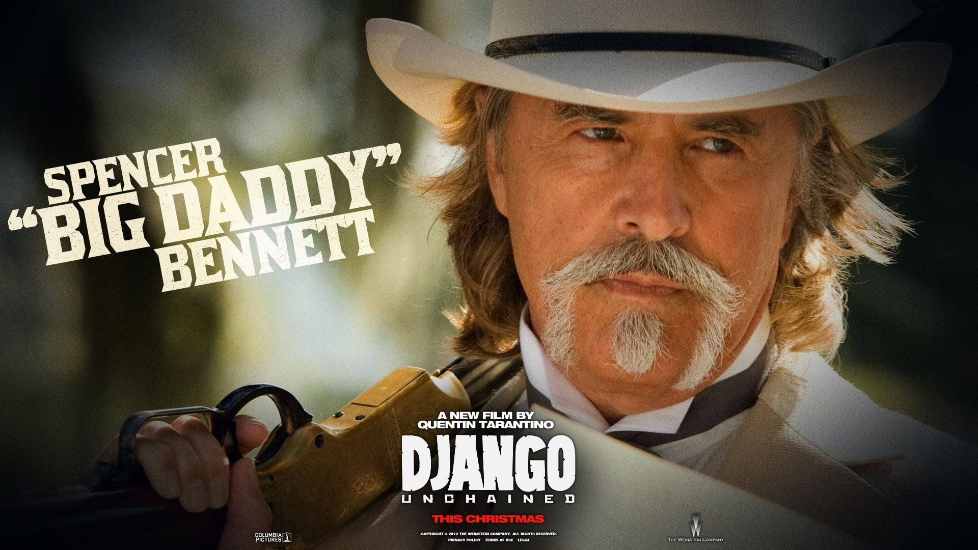 Watch Free Django Unchained 2012 Movie Without Downloading