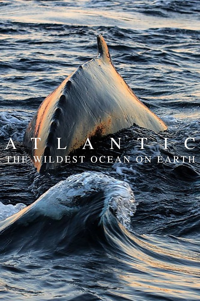Atlantic: The Wildest Ocean on Earth series tv complet