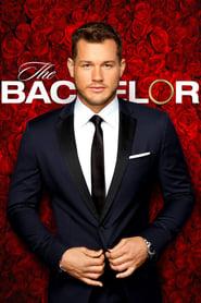 The Bachelor streaming vf
