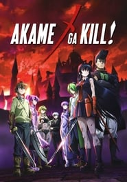 Akame ga Kill! streaming vf