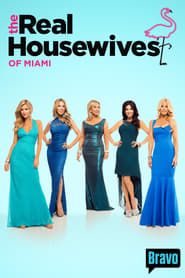The Real Housewives of Miami streaming vf